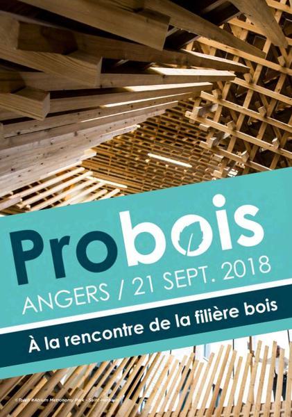 Rencontres construction bois angers for Construction bois 35